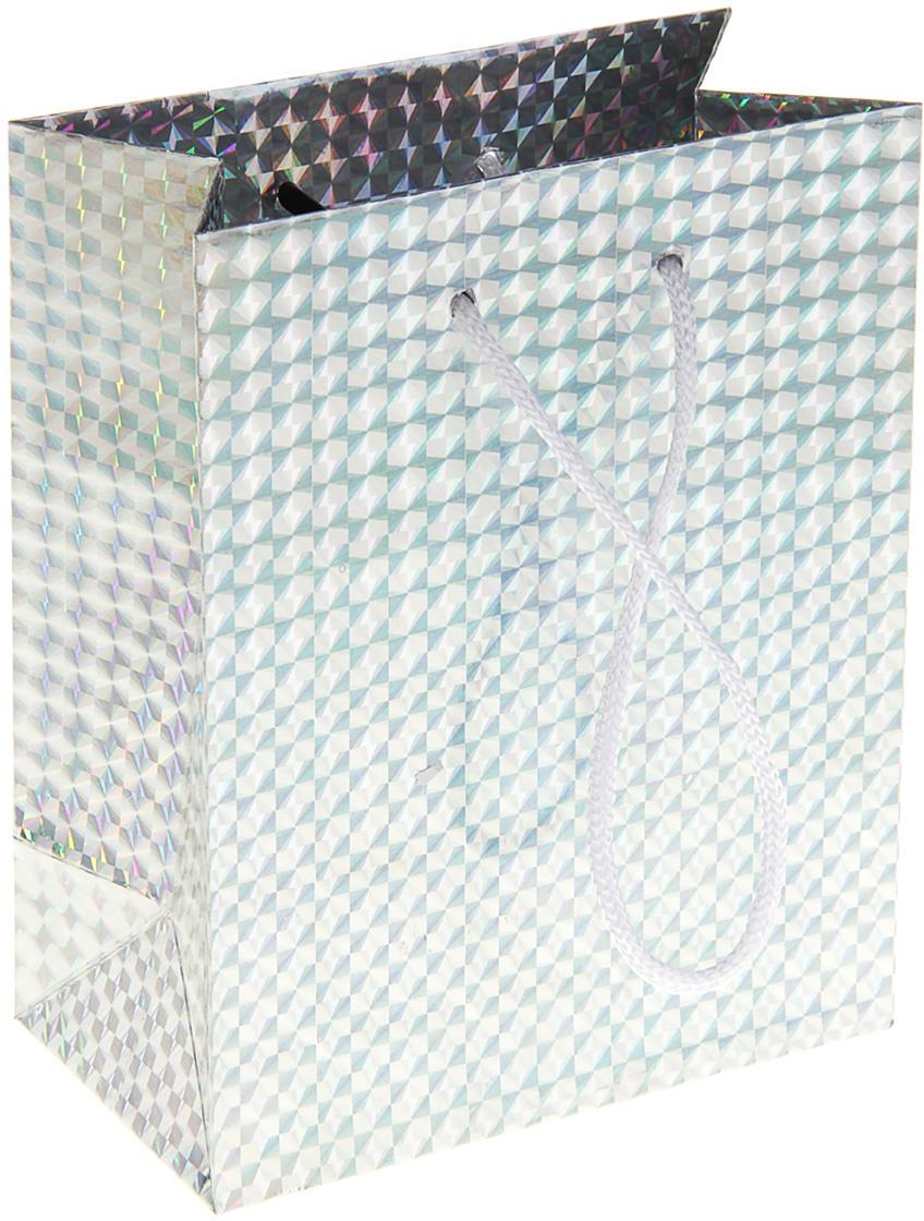 Пакет подарочный Рисунок, голографический, цвет: серебристый, 6,5 х 11,5 х 14,5 см. 822493822493Любой подарок начинается с упаковки. Что может быть трогательнее и волшебнее, чем ритуал разворачивания полученного презента. И именно оригинальная, со вкусом выбранная упаковка выделит ваш подарок из массы других. Она продемонстрирует самые теплые чувства к виновнику торжества и создаст сказочную атмосферу праздника. Пакет голографический - это то, что вы искали.