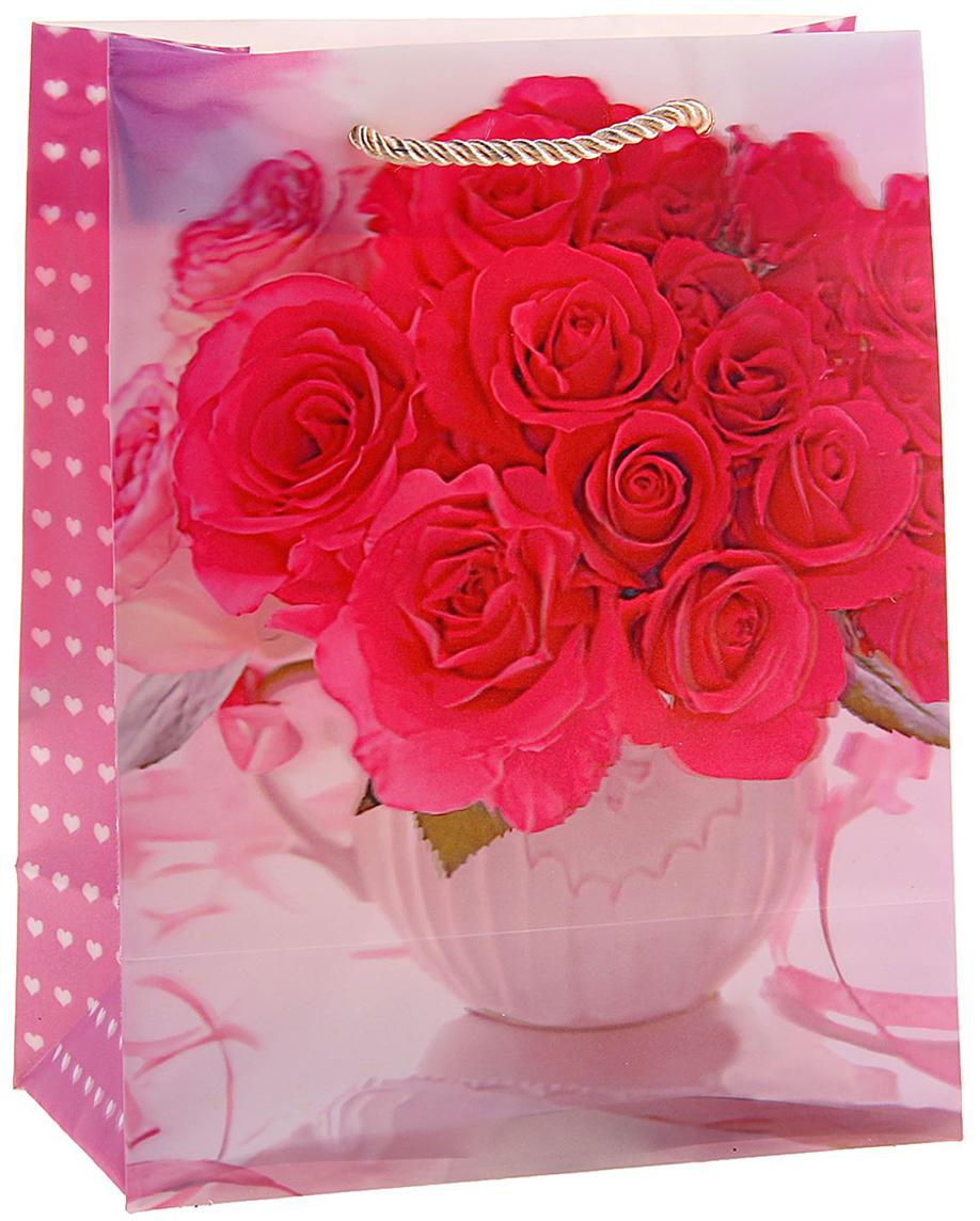 Пакет подарочный Розы в вазе, 3D рисунок, 8 х 18 х 23 см пакет подарочный розы 23 х 18 х 8 см синий