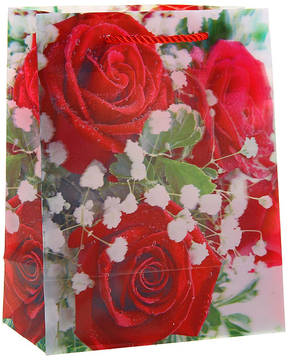 Пакет подарочный Красные розы, 3D рисунок, цвет: красный, 8 х 18 х 23 см. 822835822835Любой подарок начинается с упаковки. Что может быть трогательнее и волшебнее, чем ритуал разворачивания полученного презента. И именно оригинальная, со вкусом выбранная упаковка выделит ваш подарок из массы других. Она продемонстрирует самые теплые чувства к виновнику торжества и создаст сказочную атмосферу праздника. Пакет пластиковый, 3D рисунок Красные розы - это то, что вы искали.