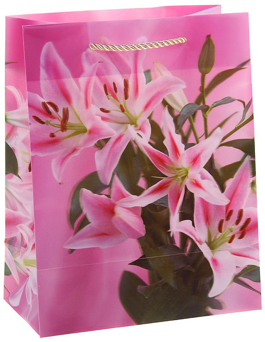 Пакет подарочный Цветы лилии, 3D рисунок, цвет: розовый, 8 х 18 х 23 см. 822841822841Любой подарок начинается с упаковки. Что может быть трогательнее и волшебнее, чем ритуал разворачивания полученного презента. И именно оригинальная, со вкусом выбранная упаковка выделит ваш подарок из массы других. Она продемонстрирует самые теплые чувства к виновнику торжества и создаст сказочную атмосферу праздника. Пакет пластиковый, 3D рисунок Цветы лилии - это то, что вы искали.