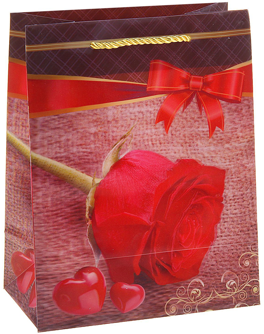 Пакет подарочный Роза, 3D рисунок, цвет: красный, 8 х 18 х 23 см. 822843 препарат флексинова где можно купить в омске