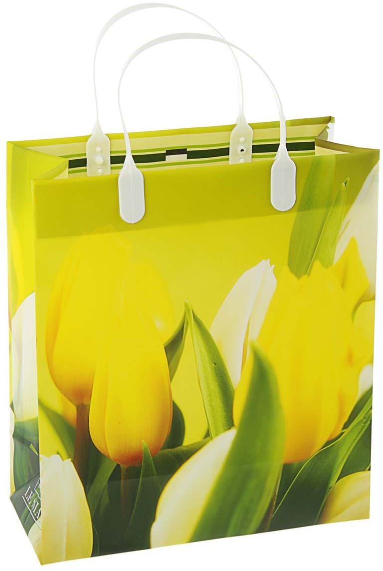 Пакет подарочный Предчувствие мечты, цвет: желтый, 23 х 10 х 26 см. 20996972099697Любой подарок начинается с упаковки. Что может быть трогательнее и волшебнее, чем ритуал разворачивания полученного презента. И именно оригинальная, со вкусом выбранная упаковка выделит ваш подарок из массы других. Она продемонстрирует самые теплые чувства к виновнику торжества и создаст сказочную атмосферу праздника.