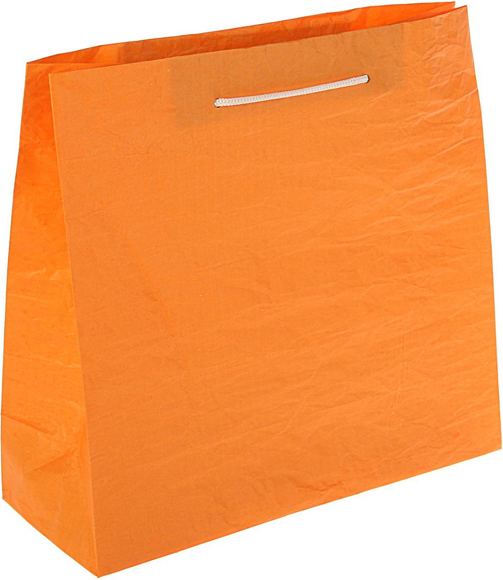 Пакет подарочный Эколюкс, цвет: оранжевый, 31 х 30 х 12 см. 30981833098183Любой подарок начинается с упаковки. Что может быть трогательнее и волшебнее, чем ритуал разворачивания полученного презента. И именно оригинальная, со вкусом выбранная упаковка выделит ваш подарок из массы других. Она продемонстрирует самые теплые чувства к виновнику торжества и создаст сказочную атмосферу праздника - это то, что вы искали.