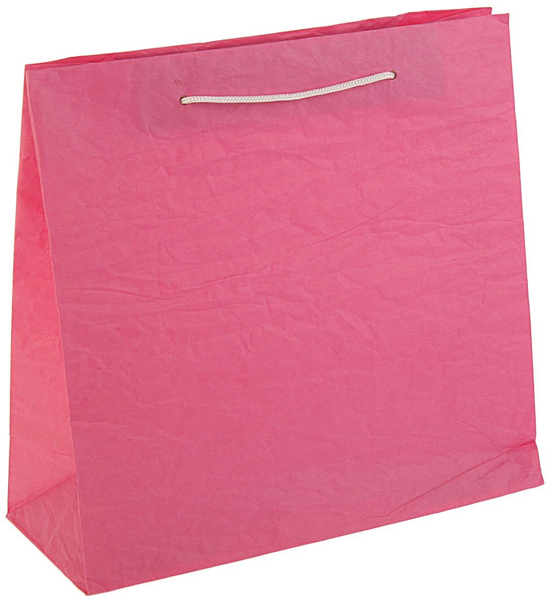 Пакет подарочный Эколюкс, цвет: розовый, 31 х 30 х 12 см. 30981833098183Любой подарок начинается с упаковки. Что может быть трогательнее и волшебнее, чем ритуал разворачивания полученного презента. И именно оригинальная, со вкусом выбранная упаковка выделит ваш подарок из массы других. Она продемонстрирует самые теплые чувства к виновнику торжества и создаст сказочную атмосферу праздника - это то, что вы искали.