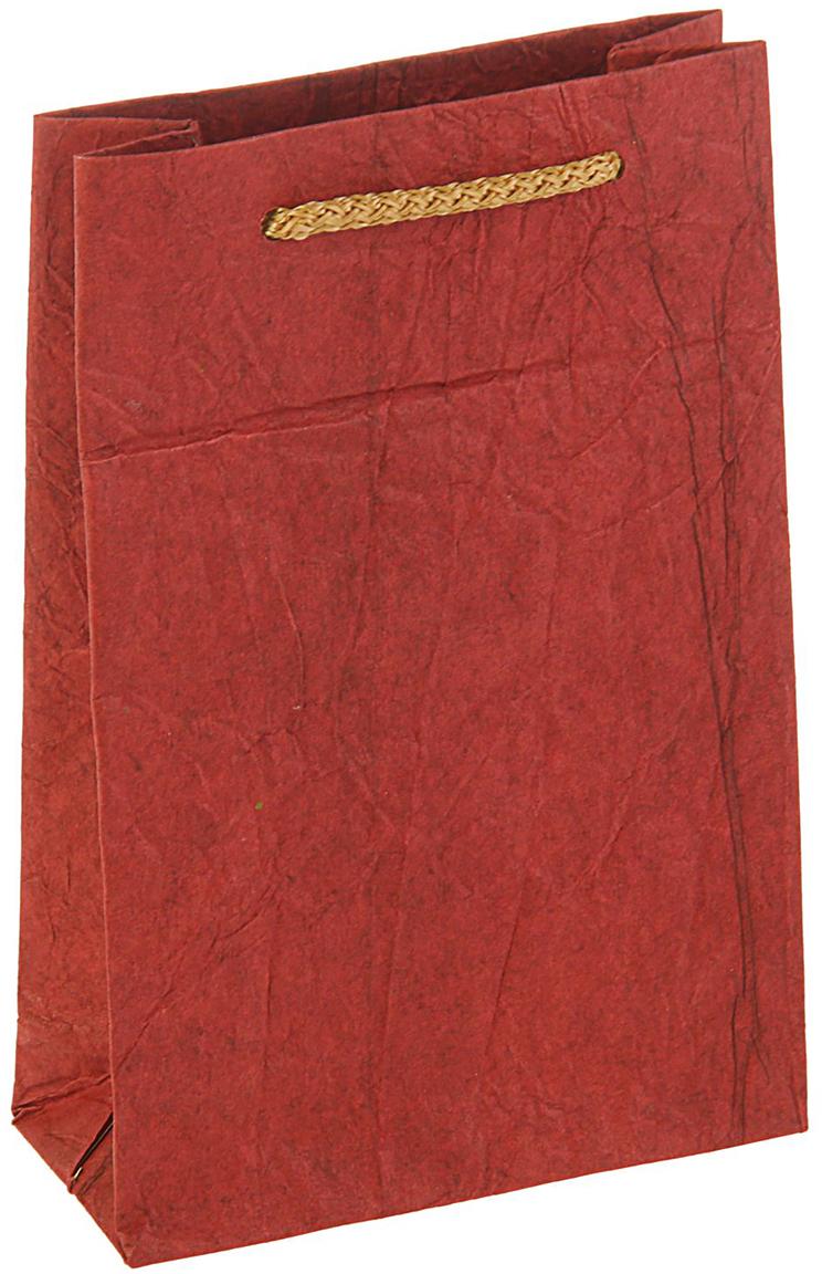 Пакет подарочный Дизайнерский, цвет: бордовый, 18 х 12 х 5 см. 27280792728079Любой подарок начинается с упаковки. Что может быть трогательнее и волшебнее, чем ритуал разворачивания полученного презента. И именно оригинальная, со вкусом выбранная упаковка выделит ваш подарок из массы других. Она продемонстрирует самые теплые чувства к виновнику торжества и создаст сказочную атмосферу праздника - это то, что вы искали.