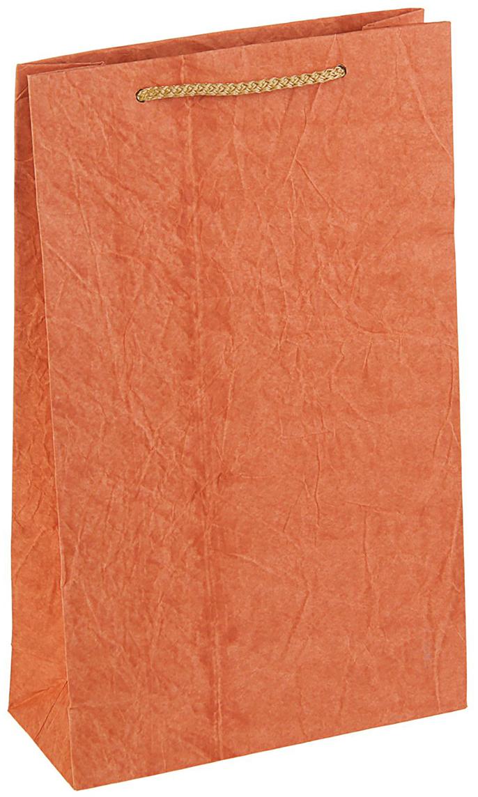 Пакет подарочный Дизайнерский, цвет: оранжевый, 28 х 17 х 7 см. 27280812728081Любой подарок начинается с упаковки. Что может быть трогательнее и волшебнее, чем ритуал разворачивания полученного презента. И именно оригинальная, со вкусом выбранная упаковка выделит ваш подарок из массы других. Она продемонстрирует самые теплые чувства к виновнику торжества и создаст сказочную атмосферу праздника - это то, что вы искали.