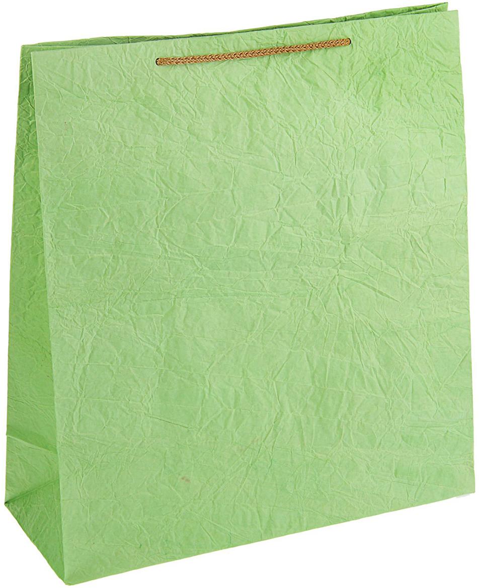 Пакет подарочный Дизайнерский, цвет: светло-зеленый, 39 х 34,5 х 14 см. 27280832728083Любой подарок начинается с упаковки. Что может быть трогательнее и волшебнее, чем ритуал разворачивания полученного презента. И именно оригинальная, со вкусом выбранная упаковка выделит ваш подарок из массы других. Она продемонстрирует самые теплые чувства к виновнику торжества и создаст сказочную атмосферу праздника - это то, что вы искали.