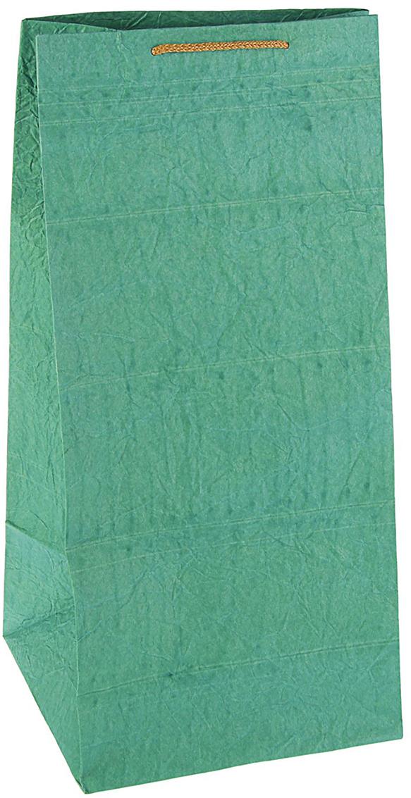 Пакет подарочный Дизайнерский, цвет: зеленый, 50 х 25 х 25 см. 27280872728087Любой подарок начинается с упаковки. Что может быть трогательнее и волшебнее, чем ритуал разворачивания полученного презента. И именно оригинальная, со вкусом выбранная упаковка выделит ваш подарок из массы других. Она продемонстрирует самые теплые чувства к виновнику торжества и создаст сказочную атмосферу праздника - это то, что вы искали.