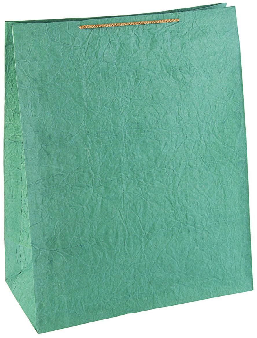Пакет подарочный Дизайнерский, цвет: зеленый, 50 х 25 х 25 см. 27280892728089Любой подарок начинается с упаковки. Что может быть трогательнее и волшебнее, чем ритуал разворачивания полученного презента. И именно оригинальная, со вкусом выбранная упаковка выделит ваш подарок из массы других. Она продемонстрирует самые теплые чувства к виновнику торжества и создаст сказочную атмосферу праздника - это то, что вы искали.