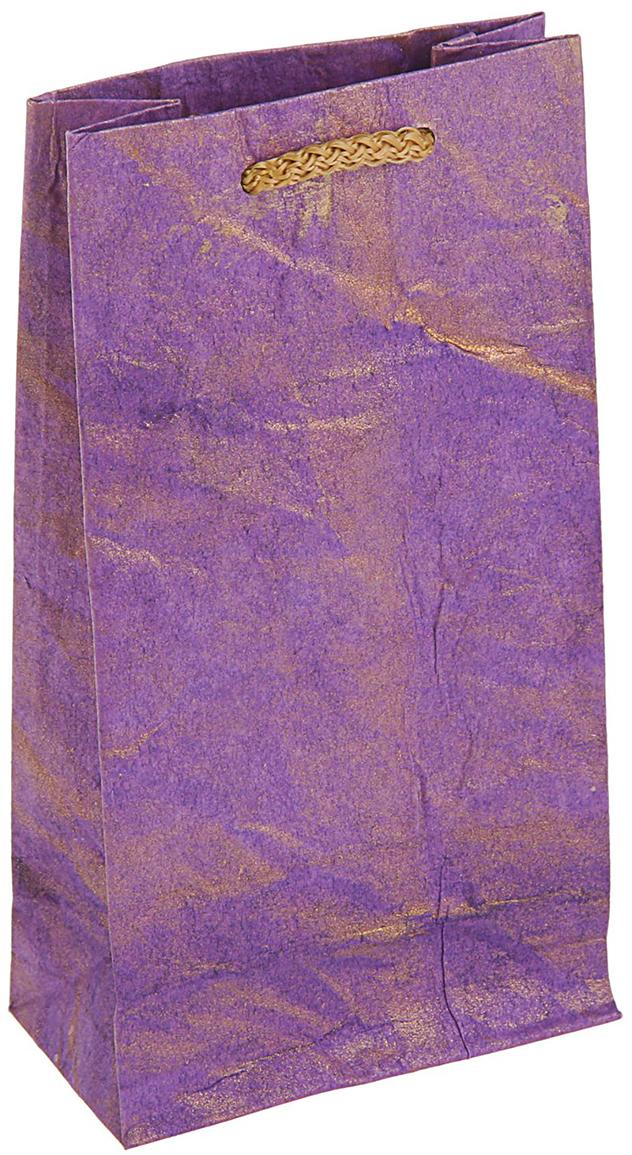 Пакет подарочный Дизайнерский, цвет: фиолетовый, 17 х 9 х 4,5 см. 27280912728091Любой подарок начинается с упаковки. Что может быть трогательнее и волшебнее, чем ритуал разворачивания полученного презента. И именно оригинальная, со вкусом выбранная упаковка выделит ваш подарок из массы других. Она продемонстрирует самые теплые чувства к виновнику торжества и создаст сказочную атмосферу праздника - это то, что вы искали.