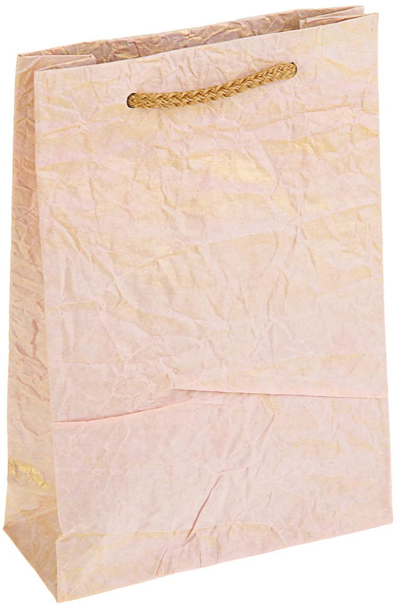 Пакет подарочный Дизайнерский, цвет: розовый, 18 х 12 х 5 см. 27280922728092Любой подарок начинается с упаковки. Что может быть трогательнее и волшебнее, чем ритуал разворачивания полученного презента. И именно оригинальная, со вкусом выбранная упаковка выделит ваш подарок из массы других. Она продемонстрирует самые теплые чувства к виновнику торжества и создаст сказочную атмосферу праздника - это то, что вы искали.