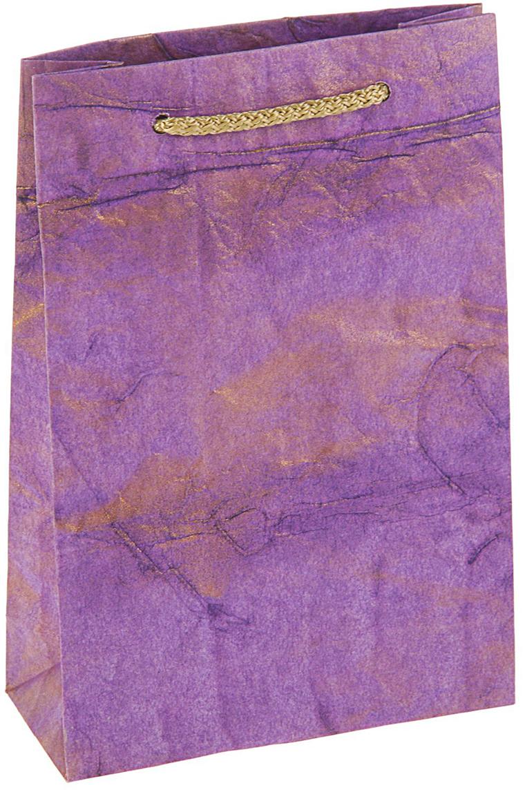 Пакет подарочный Дизайнерский, цвет: фиолетовый, 18 х 12 х 5 см. 27280922728092Любой подарок начинается с упаковки. Что может быть трогательнее и волшебнее, чем ритуал разворачивания полученного презента. И именно оригинальная, со вкусом выбранная упаковка выделит ваш подарок из массы других. Она продемонстрирует самые теплые чувства к виновнику торжества и создаст сказочную атмосферу праздника - это то, что вы искали.