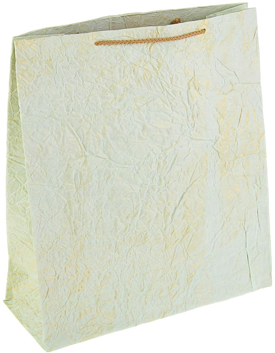 Пакет подарочный Дизайнерский, цвет: бежевый, 39 х 34,5 х 14 см. 27280952728095Любой подарок начинается с упаковки. Что может быть трогательнее и волшебнее, чем ритуал разворачивания полученного презента. И именно оригинальная, со вкусом выбранная упаковка выделит ваш подарок из массы других. Она продемонстрирует самые теплые чувства к виновнику торжества и создаст сказочную атмосферу праздника - это то, что вы искали.