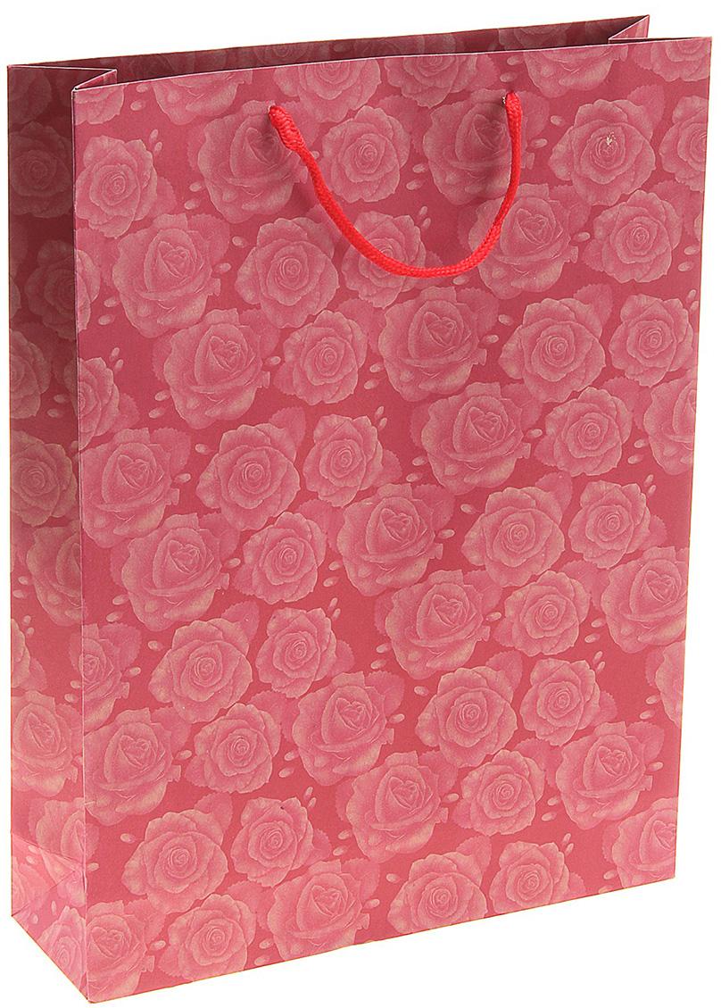 Пакет подарочный Комплимент, цвет: розовый, 9,5 х 31 х 42 см. 141080141080Любой подарок начинается с упаковки. Что может быть трогательнее и волшебнее, чем ритуал разворачивания полученного презента. И именно оригинальная, со вкусом выбранная упаковка выделит ваш подарок из массы других. Она продемонстрирует самые теплые чувства к виновнику торжества и создаст сказочную атмосферу праздника. Пакет-крафт Комплимент - это то, что вы искали.
