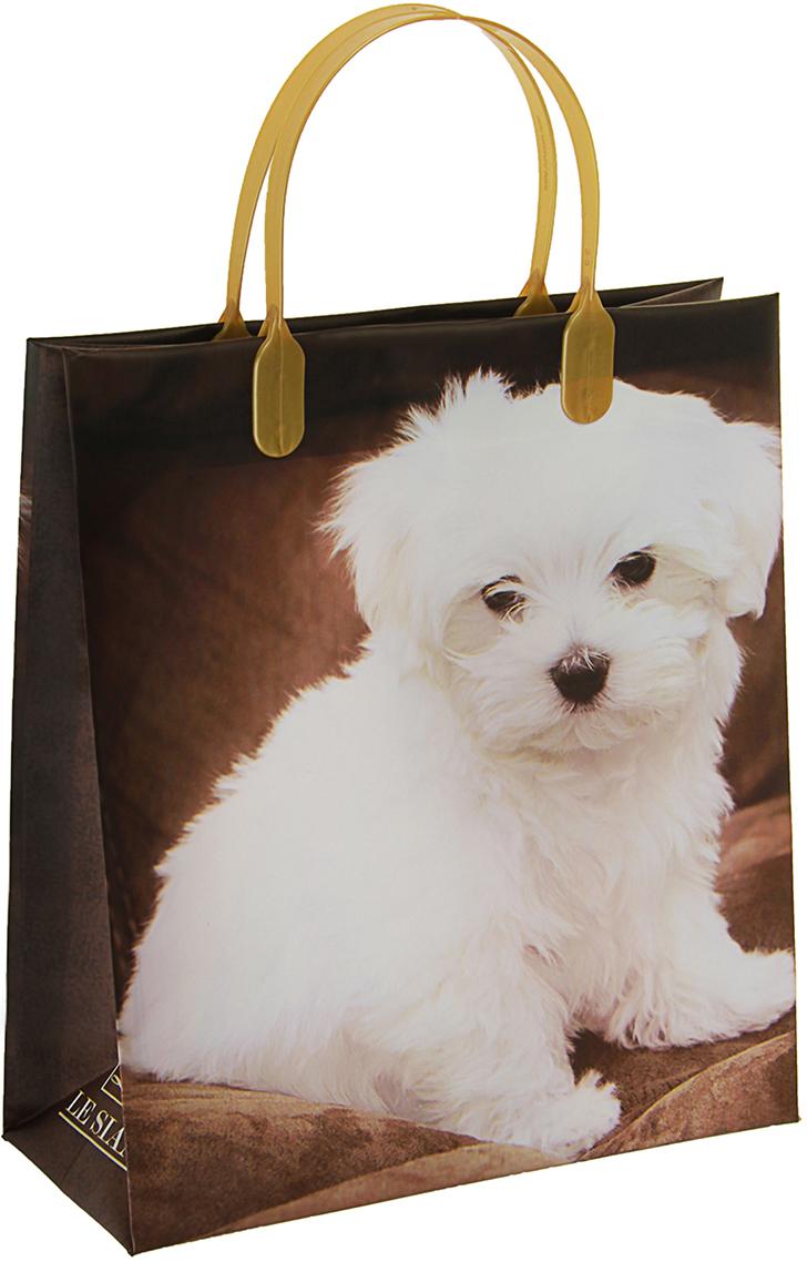 Пакет подарочный Дружок, цвет: мультиколор, 23 х 10 х 26 см. 29802312980231Любой подарок начинается с упаковки. Что может быть трогательнее и волшебнее, чем ритуал разворачивания полученного презента. И именно оригинальная, со вкусом выбранная упаковка выделит ваш подарок из массы других. Она продемонстрирует самые теплые чувства к виновнику торжества и создаст сказочную атмосферу праздника. Пакет Дружок, мягий пластик, объемный - это то, что вы искали.
