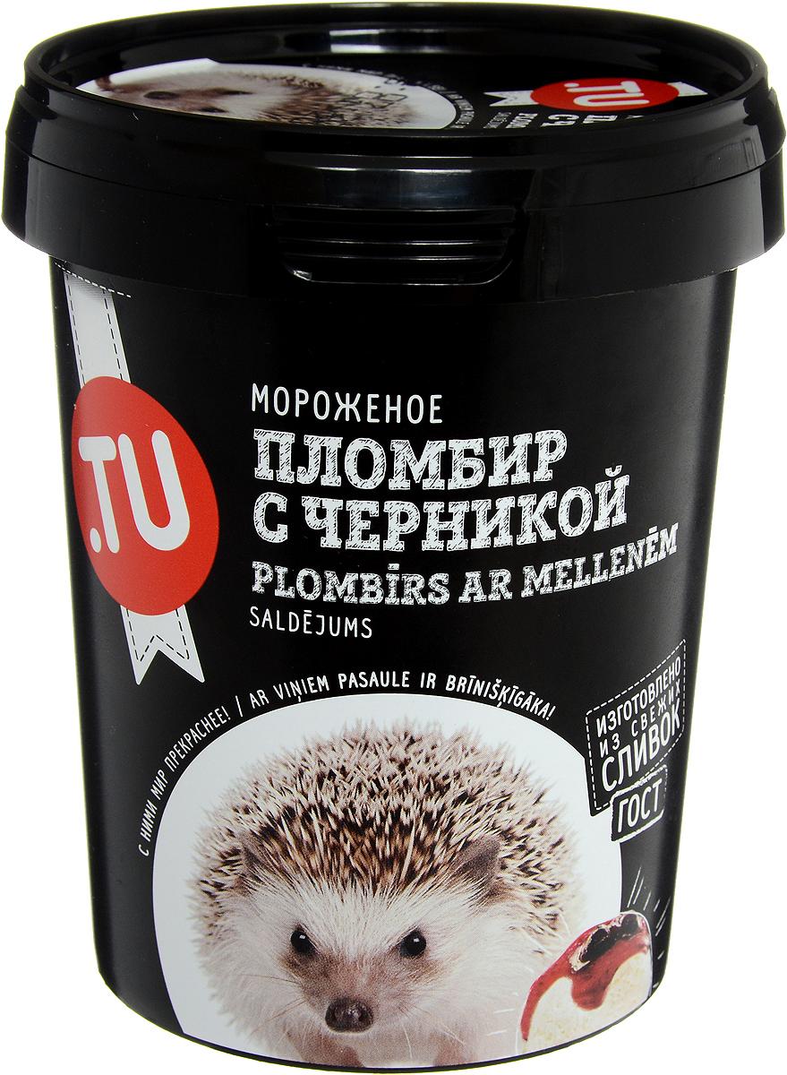 TuFood Мороженое Пломбир с черникой, 300 г молочный коктейль чудо детки пломбир ванильный 2 5