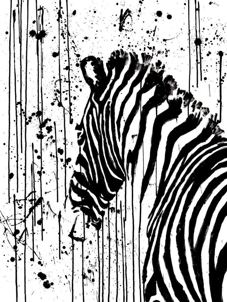 Постер с изображением зебры станет отличным украшением интерьера. Рама не входит в стоимость. Превью является примером размещения в интерьере.