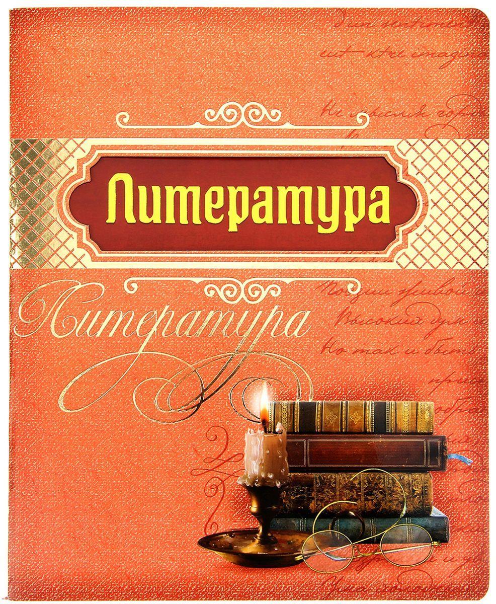 """Тетрадь """"Литература"""", в линейку, 48 листов. 193257, NoName"""