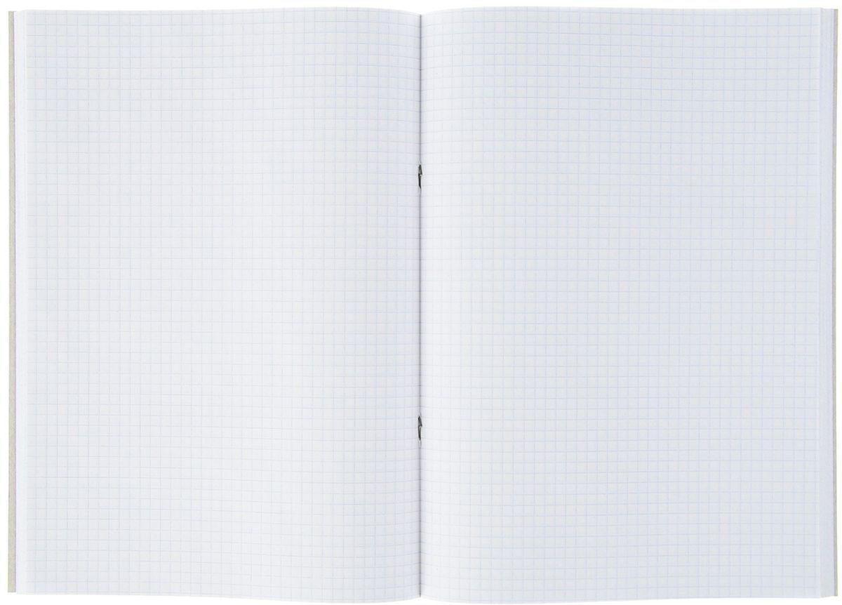 Calligrata представляет широкий ассортимент товаров для учеников, студентов, офисных сотрудников и руководителей, а также товары для  творчества.  Тетрадь состоит из 96 листов в клетку. На листах нет полей.  Крепление - скрепка. Формат тетради: А4.