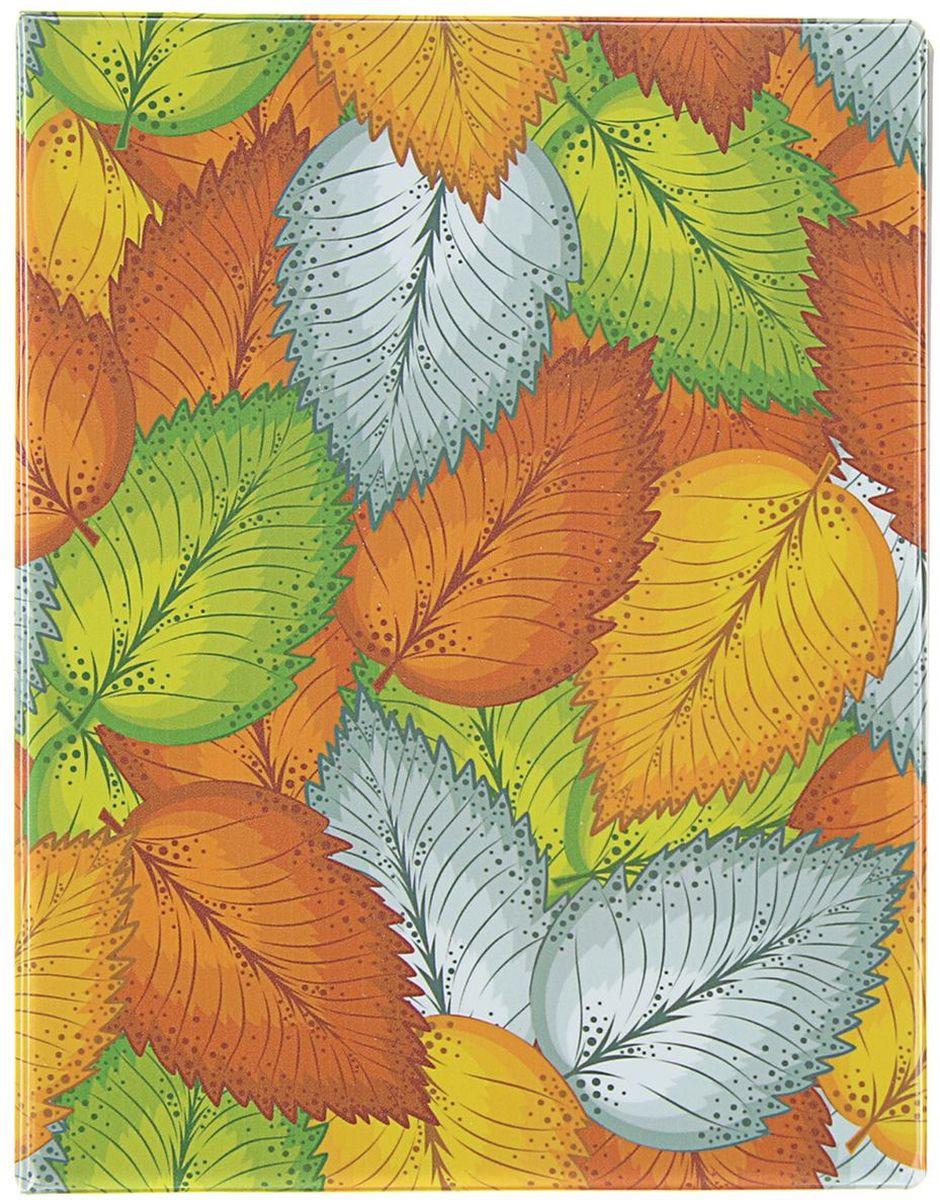 Calligrata Тетрадь со сменным блоком 100 листов в клетку 3306017 -  Тетради