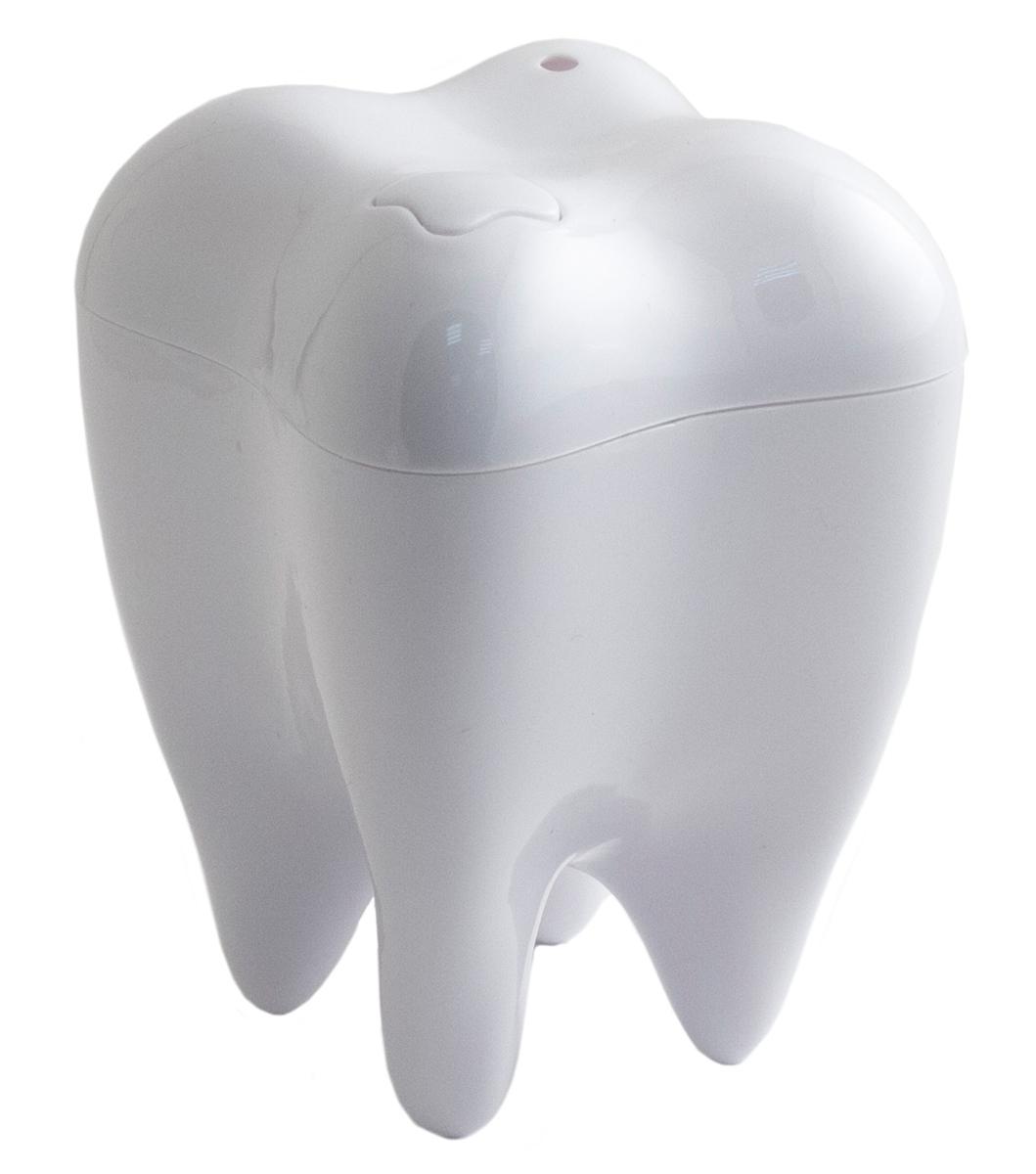 Держатель зубочисток Эврика Зуб белый, цвет: белый держатель для зубочисток spear yq1365 650