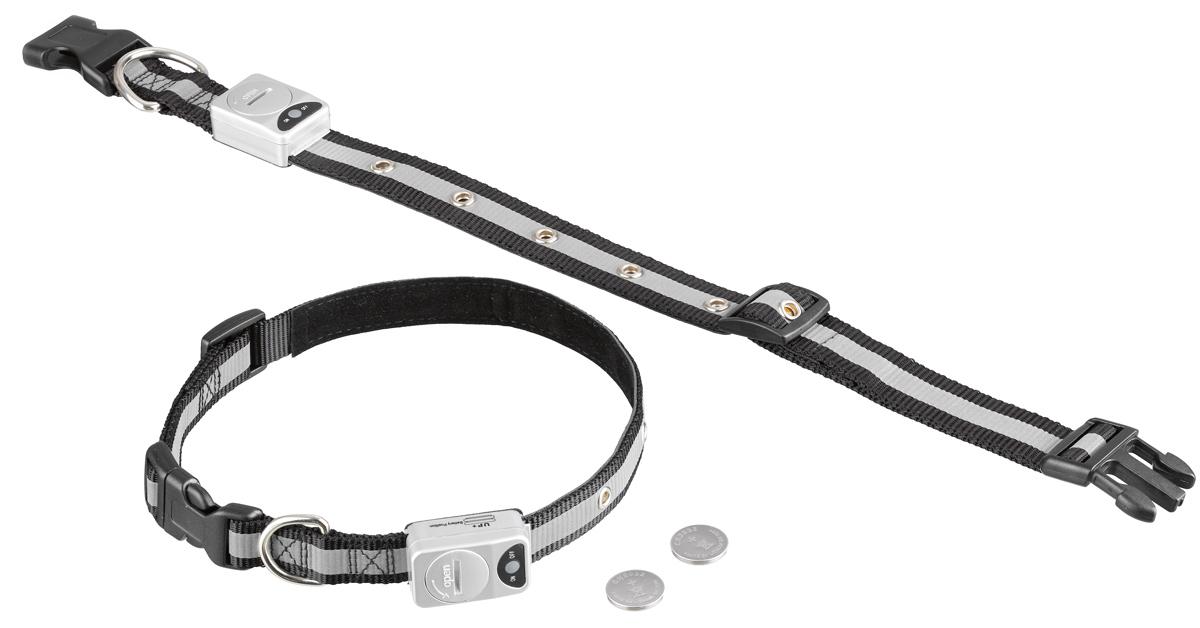Ошейник  Nobby , для собак, светодиодный, на батарейках, цвет: белый, черный, обхват шеи 55-70 см - Товары для прогулки и дрессировки (амуниция)