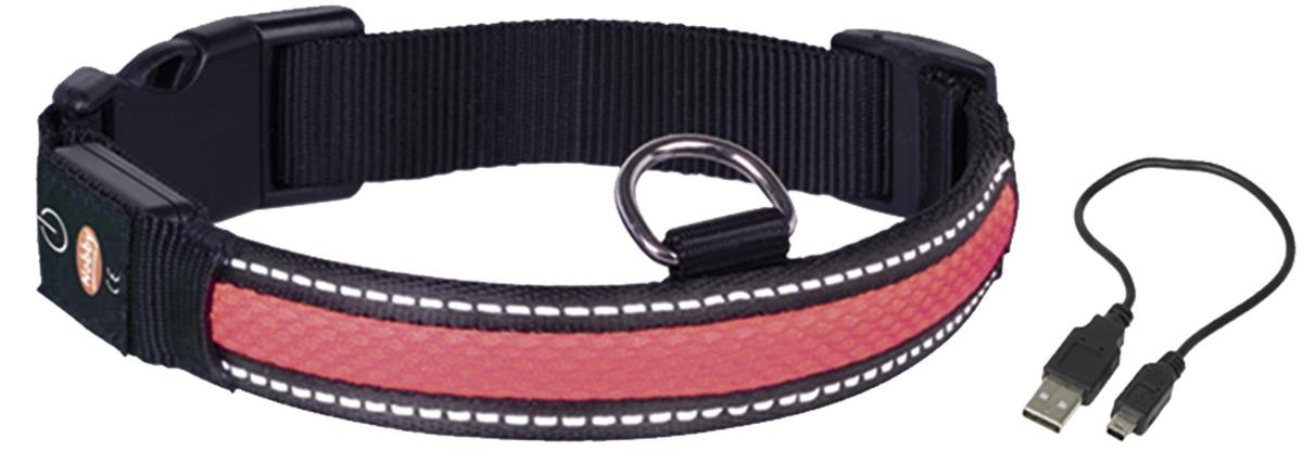Ошейник  Nobby , для собак, светодиодный, на аккумуляторах, цвет: красный, обхват шеи 36-51 см - Товары для прогулки и дрессировки (амуниция)
