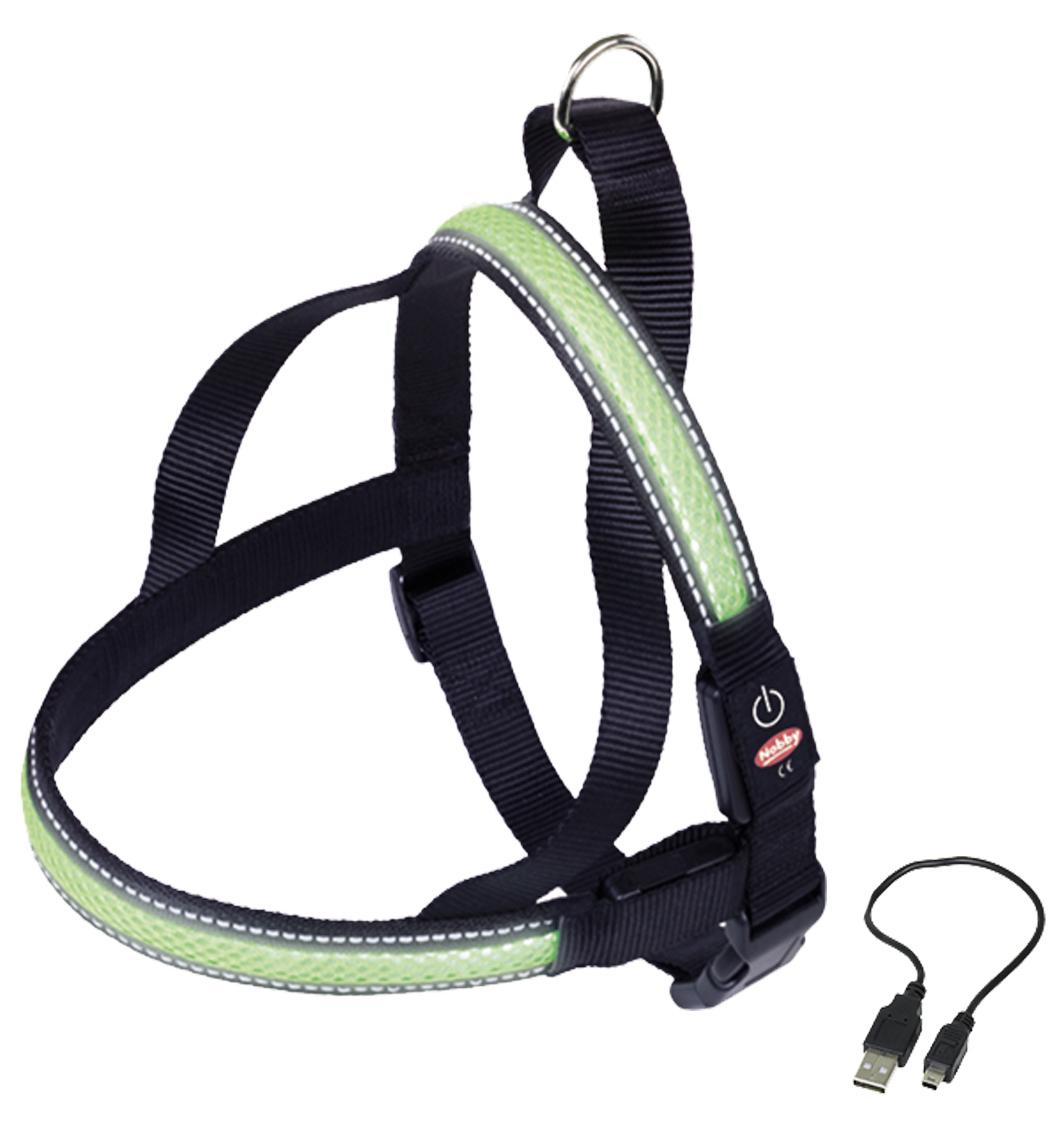Шлейка Nobby, для собак, светодиодный, на аккумуляторах, цвет: зеленый, обхват шеи 50-66 см yeelight ночник светодиодный заряжаемый с датчиком движения
