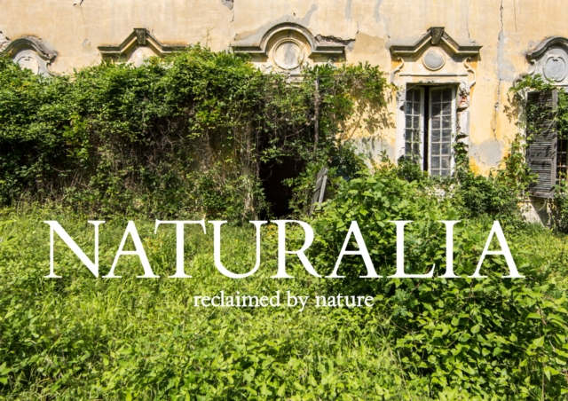 Naturalia a dream of red mansions series poker card