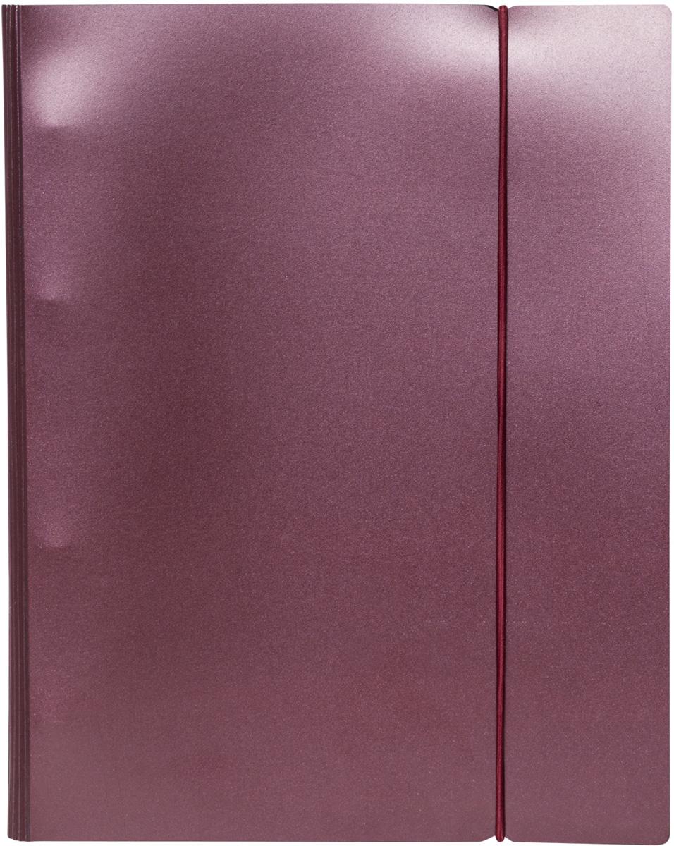 Hatber Тетрадь на кольцах Metallic 120 листов в клетку цвет бордовый тетрадь на кольцах кожаный переплет 120 листов с0492 31