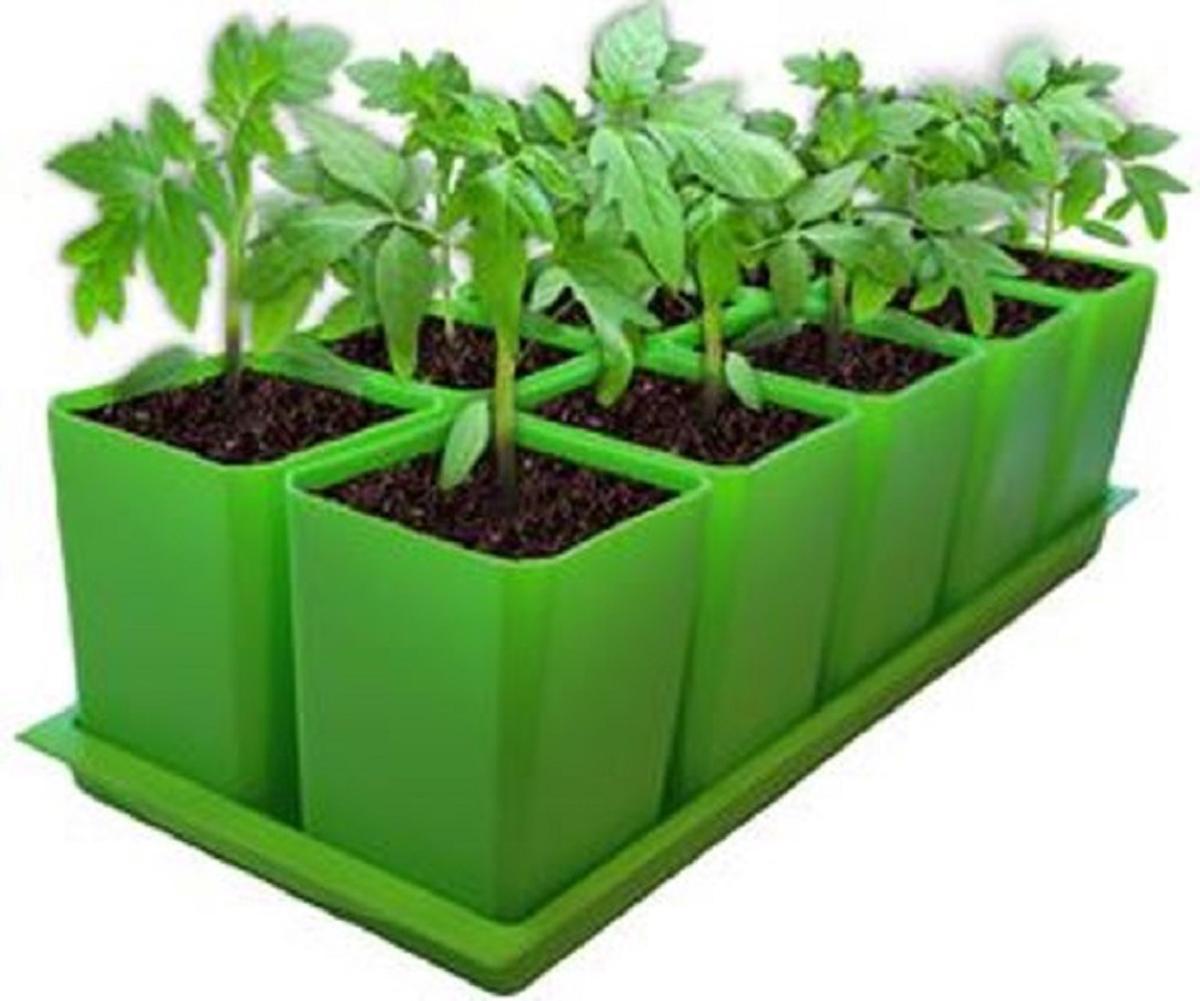Набор горшков для выращивания рассады Пеликан, с поддоном, 750 мл, 10 шт набор для выращивания магнолия 7 6х7см 1269922