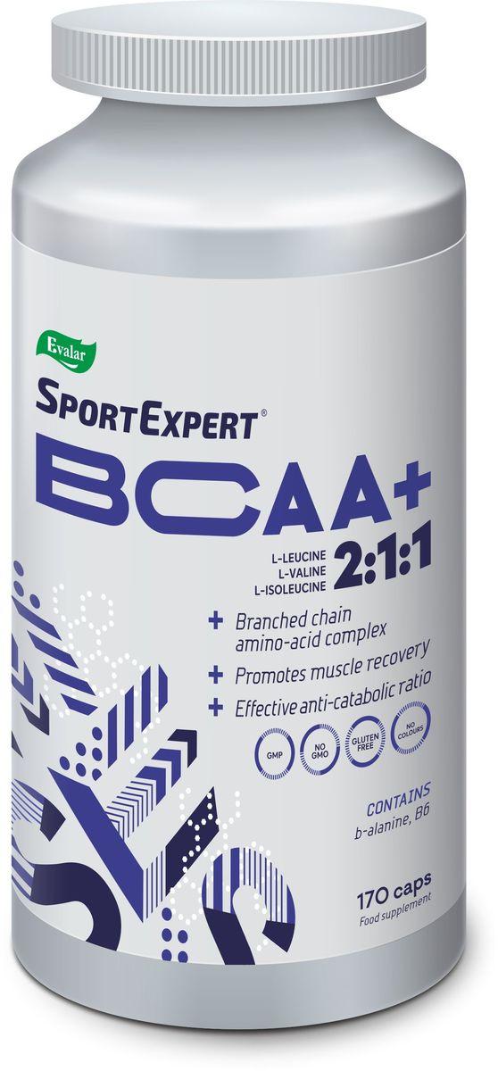 Комплект аминокислот BCAA+ SportExpert, 170 капсул4602242020189SportExpert BCAA+ Комплекс незаменимых аминокислот, который: повышает выносливость, снижает утомляемость, способствует ускорению роста мышечной массы.BCAA предотвращает процесс разрушения мышц при физических нагрузках и инициирует их рост. SportExpert BCAA участвует в выработке энергии, определяя ресинтез гликогена в мышцах, снижает утомляемость и ощущение напряжения в ходе выполнения упражнений.Прием SportExpert BCAA сразу после тренировки способствует быстрому восстановлению внутриклеточных запасов энергии, восстановлению аминокислотного баланса и началу синтеза сократительных белков.Прием SportExpert BCAA перед тренировкой повышает их запас в мышцах и обеспечивает мышцы дополнительной энергией. Состав: L-лейцин, капсула (желатин), L-валин, L-изолейцин, бета-аланин, пиридоксина гидрохлорид, крахмал (носитель), стеарат магния (агент антислеживающий).