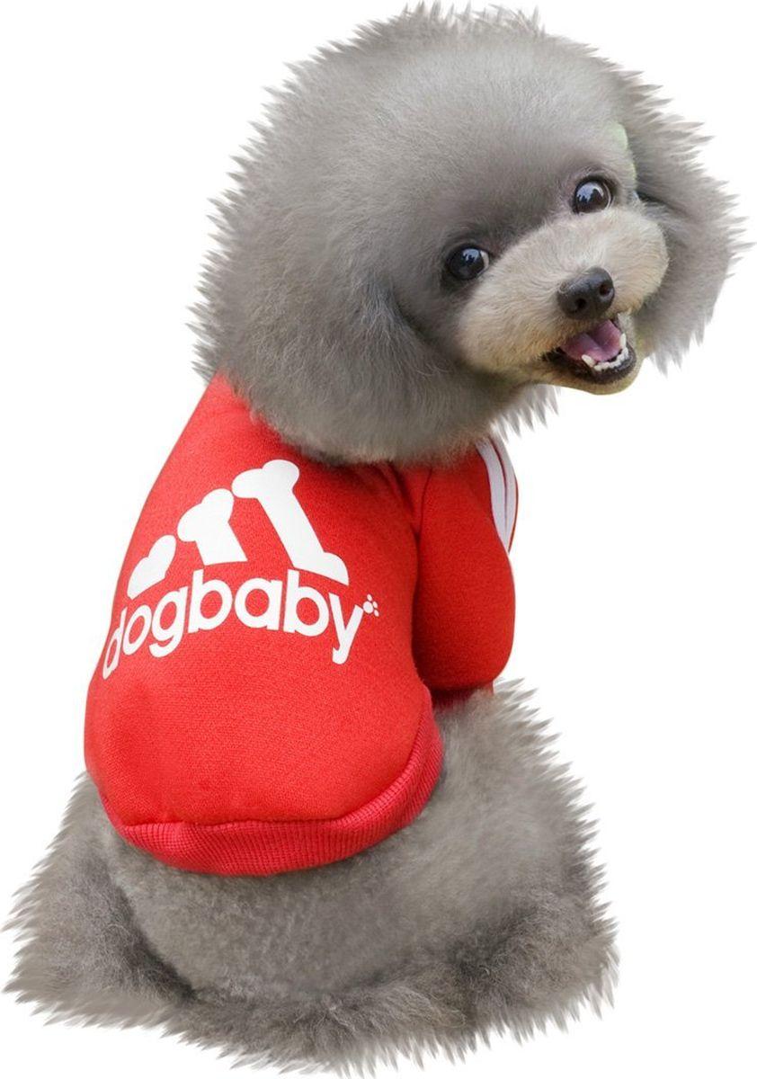 Толстовка для собак Fidget Go  Dogbaby , цвет: красный, белый, унисекс. Размер L - Одежда, обувь, украшения - Одежда