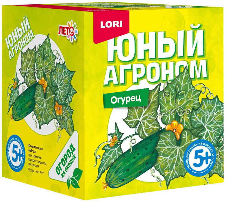 Lori Набор для опытов и экспериментов Юный агроном Огурец