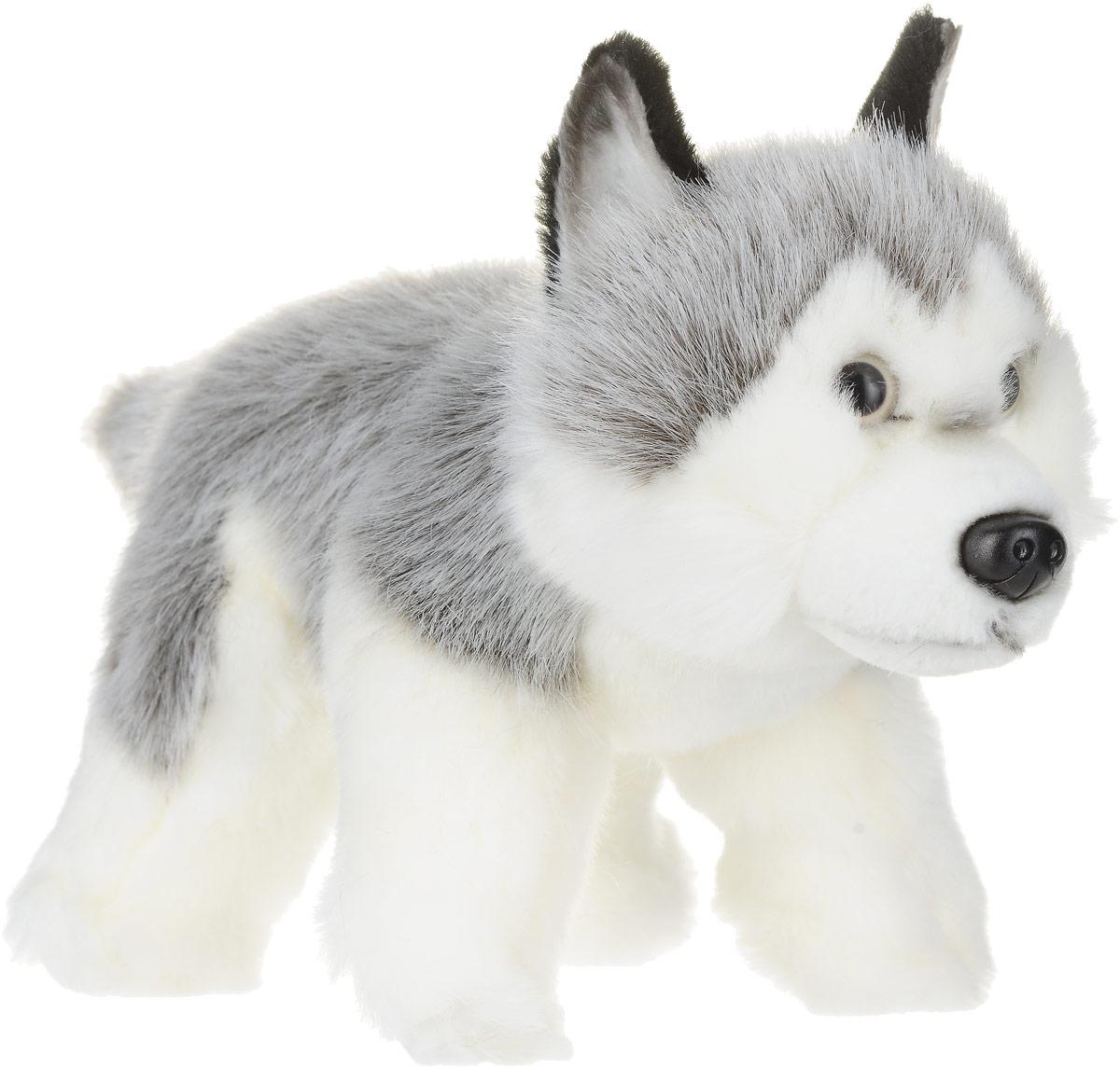 Hansa Мягкая игрушка Щенок Хаски 25 см развивающие игрушки tolo toys пищалка щенок