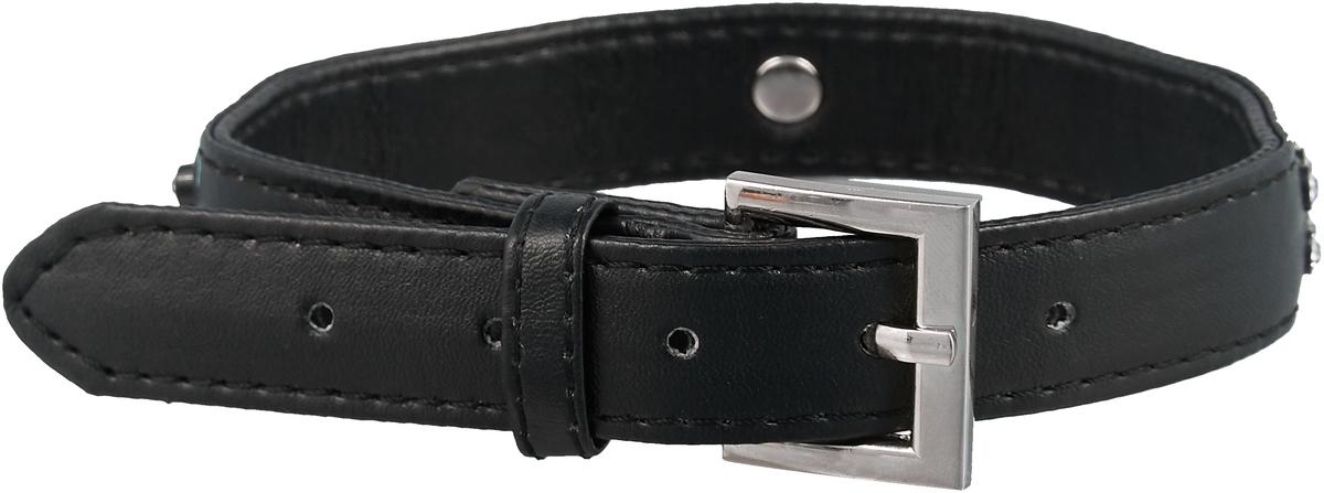 Ошейник для собак GLG, цвет: черный, 2 x 42 смAM-DC040/A-42_черныйОшейник для собак GLG, цвет: черный, 2 x 42 см