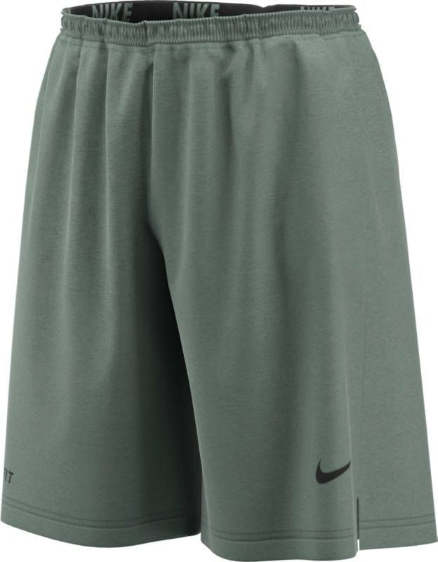 Шорты мужские Nike Dry, цвет: зеленый. 891219-365. Размер L (50/52)