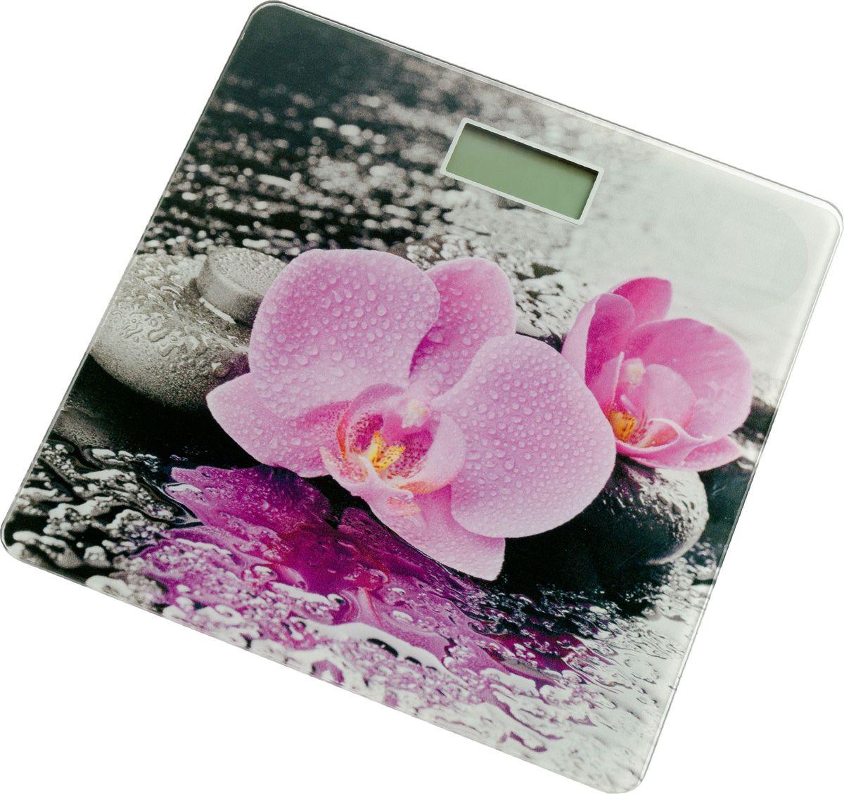 Supra BSS-2001 весы напольные весы напольные supra bss 4060 flower