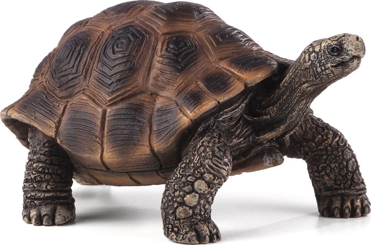 Mojo Фигурка Гигантская черепаха 387259 рюкзак детский mojo pax mojo pax рюкзак boombox с колонками черный белый