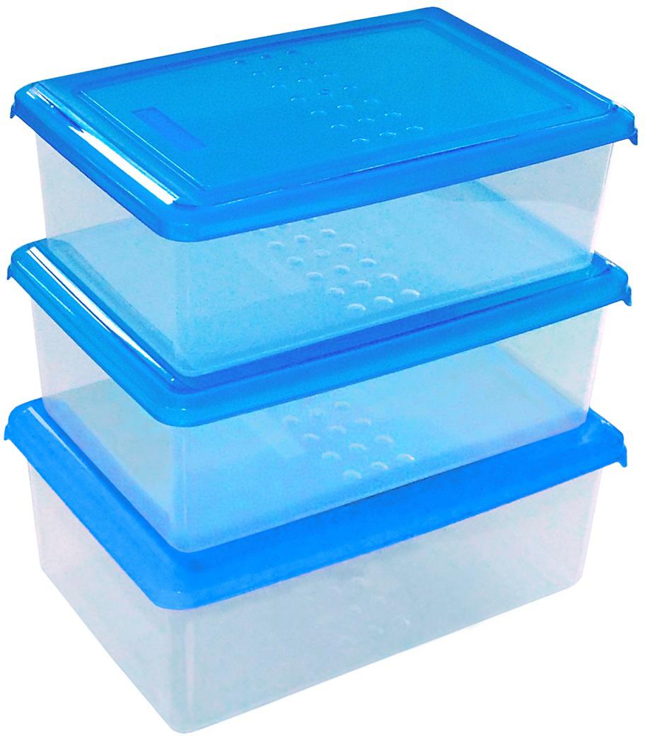 Набор емкостей Plast Team Pattern, цвет: голубой, прозрачный, прямоугольные, 1,05 л, 3 штPT9857ГПР-10РNЛегкие, прочные емкости предназначены для хранения продуктов, заморозки, разогревания вСВЧ, переноски обедов. Уникальный узор в виде пузырьков решает несколько задач: не скользятв руках, емкости одинаковой формы надежно устанавливаются друг на друга приятныетактильные ощущения от прикосновения. Использовать в СВЧ только для разогрева пищи (неболее 3-х минут), при открытой крышке.