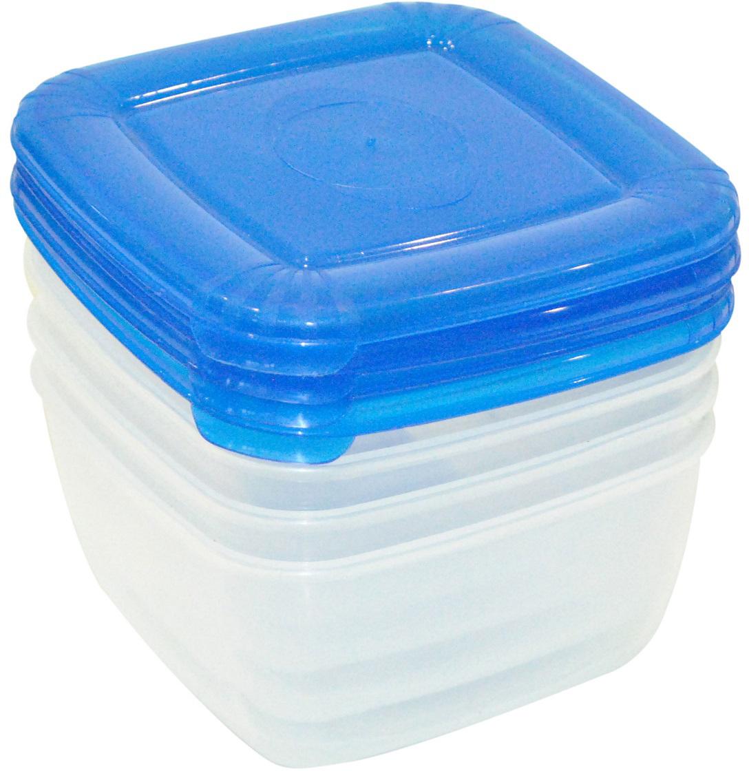 Набор емкостей Plast Team Polar, цвет: голубой, прозрачный, квадратные, 0,46 л, 4 штPT1092ГПР-12РNУниверсальные качественные контейнеры предназначены для хранения в холодильнике иморозилке, разогрева в СВЧ (не более 3х минут, при открытой крышке). Благодаря покрытиюшагрень на верхней плоскости крышки контейнер удобно держать в руках и контейнеры надежноустанавливаются друг на друга.