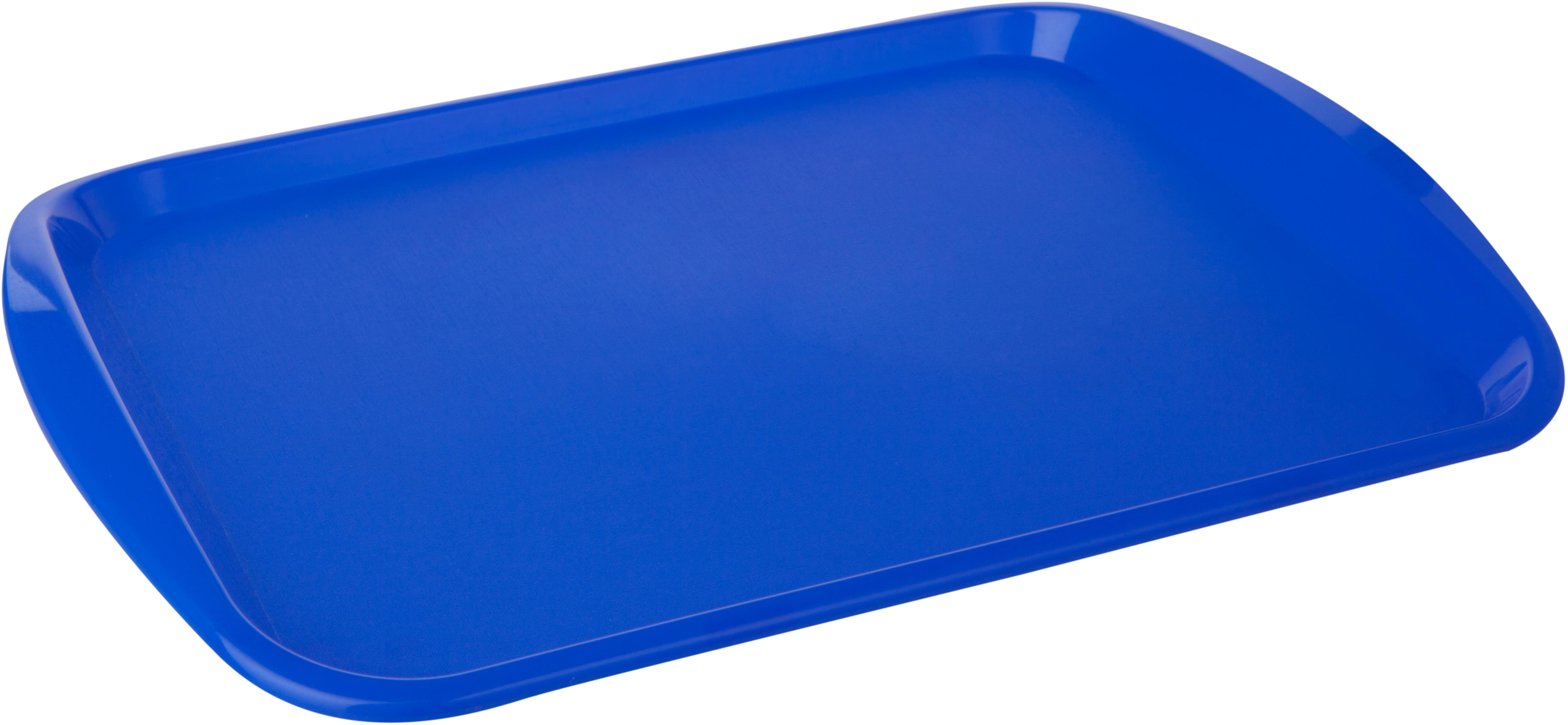 Поднос Plast Team, цвет: синий, прямоугольный, 36,5 х 25,5 х 2,5 см поднос на подвесе d40 5 см х 72 см