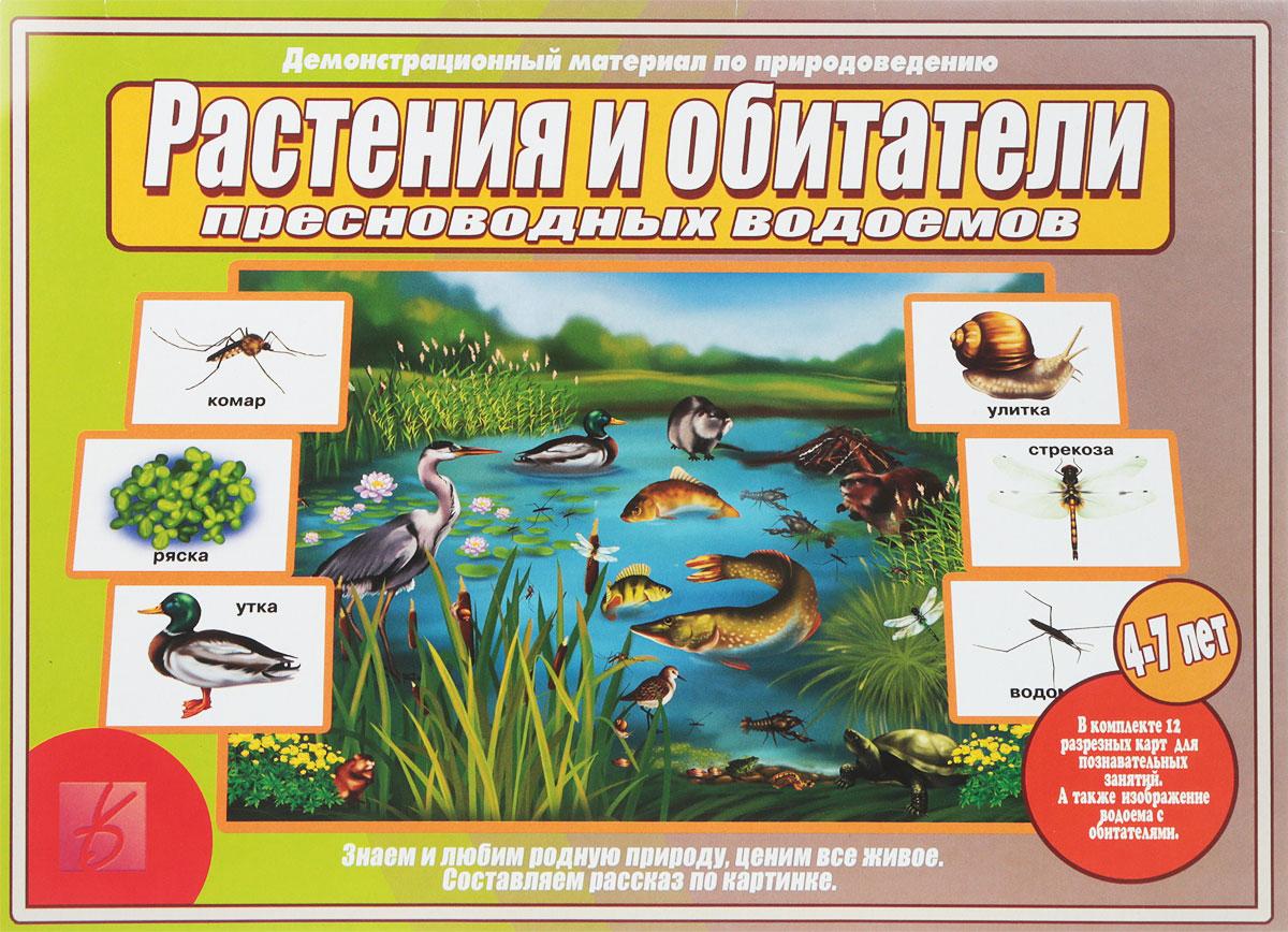 Игра Растения и обитатели пресноводных водоемов