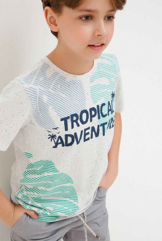 Футболка для мальчика Acoola Bradbury, цвет: светло-бежевый. 20110110107_300. Размер 170 футболка для мальчика acoola remark цвет светло бежевый 20110110105 300 размер 170