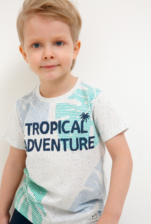 Футболка для мальчика Acoola Bradbury, цвет: светло-бежевый. 20120110107_300. Размер 122 футболка для мальчика acoola carroll цвет зеленый 20120110113 2300 размер 122