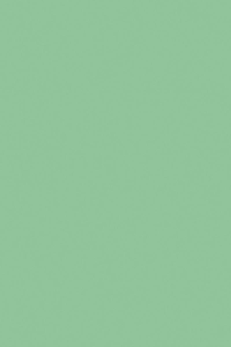 Апплика Цветная бумага тонированная цвет зеленый 10 листов апплика цветная бумага волшебная мяч 18 листов 10 цветов