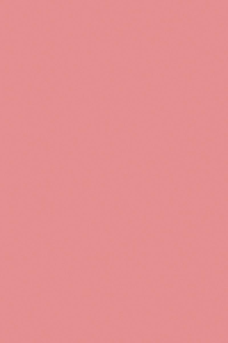 Апплика Цветная бумага тонированная цвет розовый 10 листов апплика цветная бумага волшебная мяч 18 листов 10 цветов