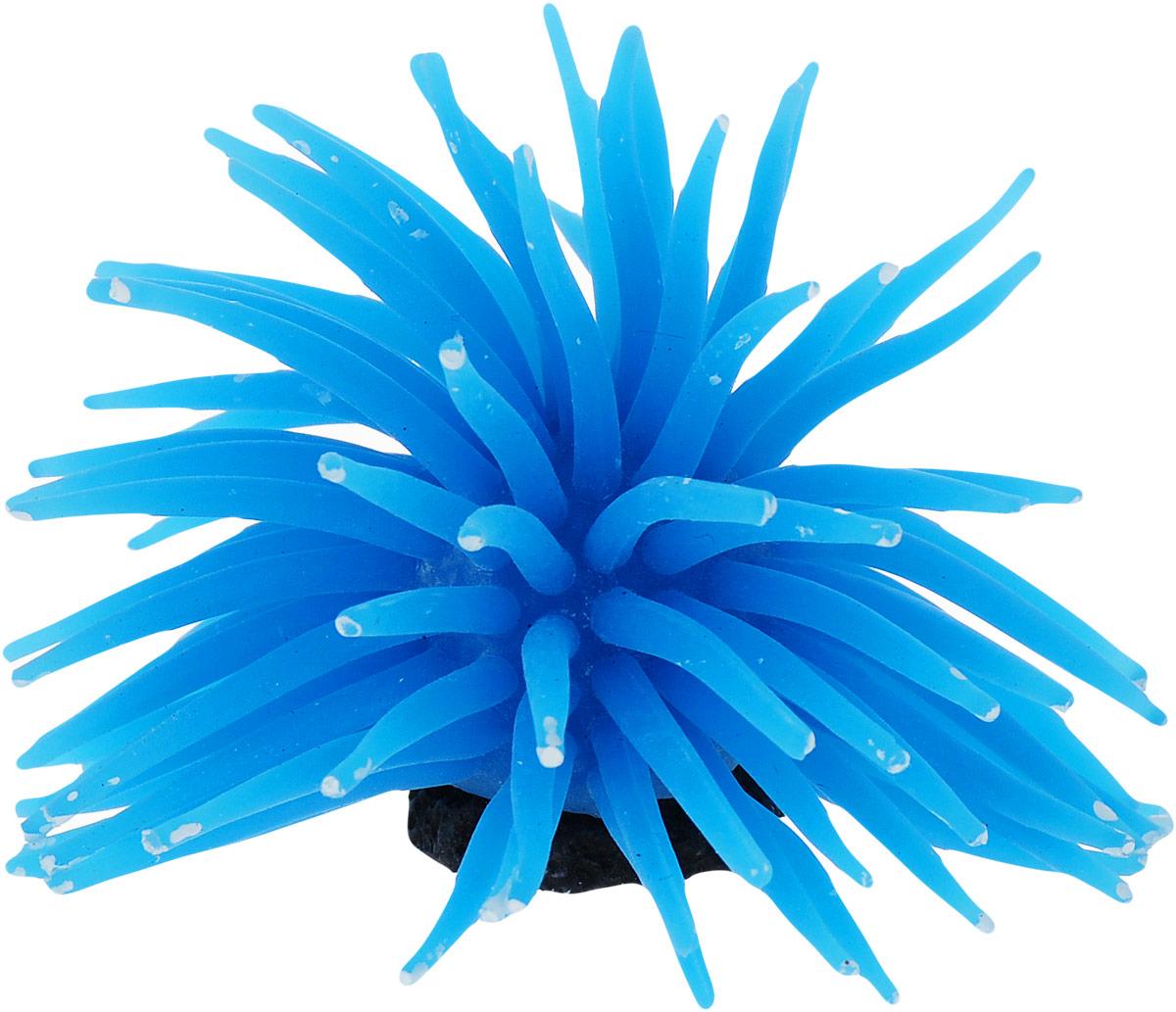 Коралл для аквариума Уют Разноцветные щупальца, силиконовый, цвет: голубой, 8 х 8 х 7 см распылитель воздуха для аквариума barbus белый корундовый 1 8 х 1 8 х 5 см