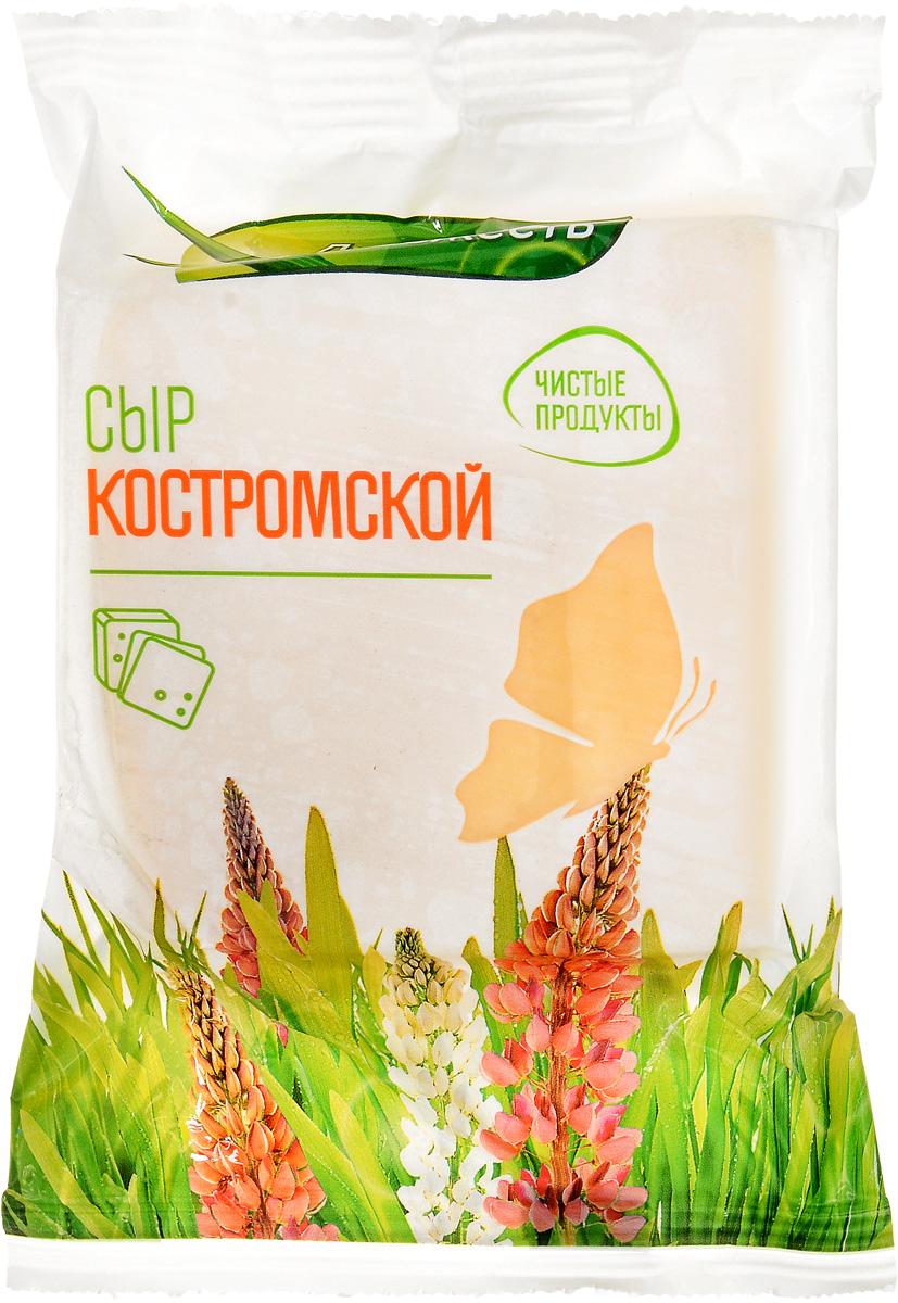 Луговая Свежесть Сыр Костромской, 45%, 225 г сыр пошехонский луговая свежесть 45