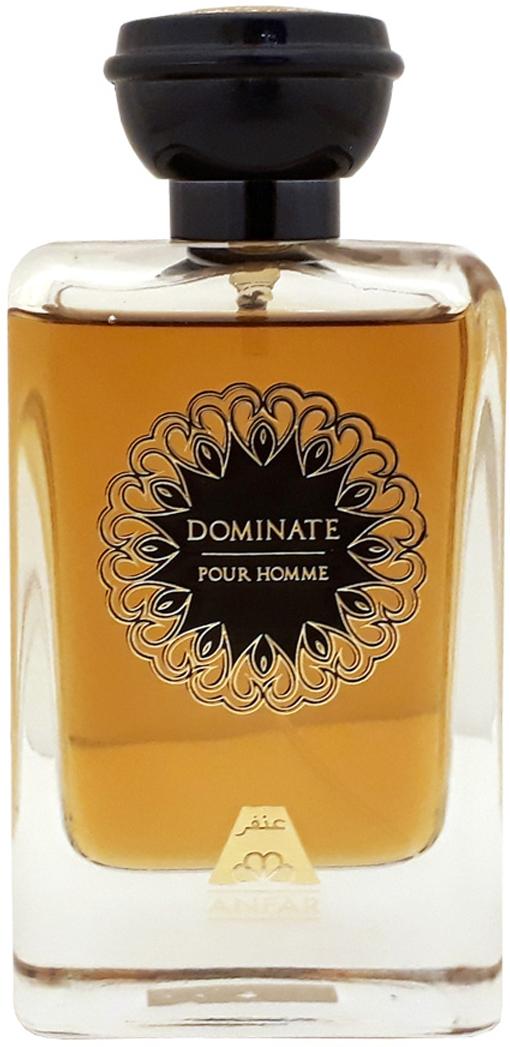 Anfar Dominate Pour Homme Парфюмерная вода мужская, 100 мл